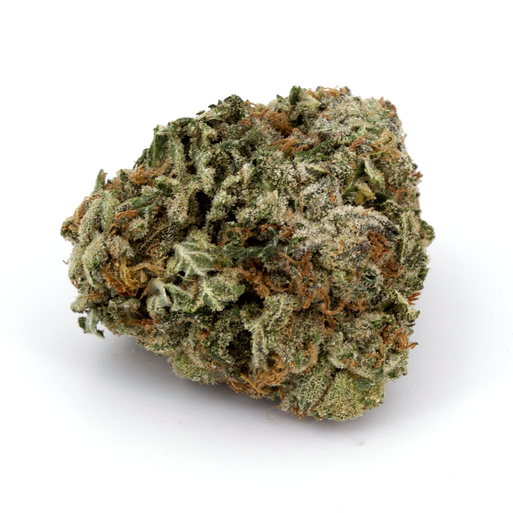 Blueberry Kush (AAA) by BC Bud Supply - Image © 2020 BC Bud Supply. All Rights Reserved.