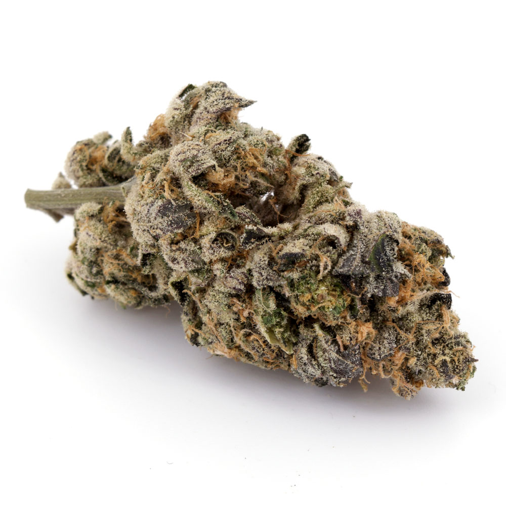 Cookie Dough (AAAA) by BC Bud Supply - Image © 2020 BC Bud Supply. All Rights Reserved.