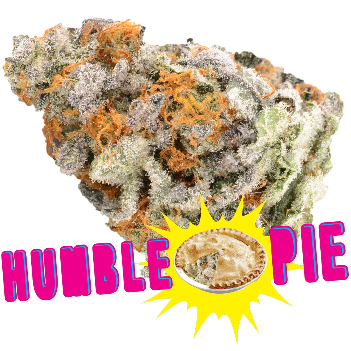 Humble Pie by BC Bud Store - Image © 2018 BC Bud Store. All Rights Reserved.