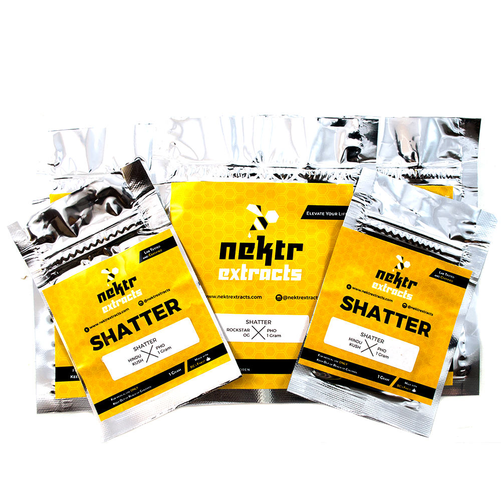 Nektr Extracts PHO Shatter – Hindu Kush by Birch + Fog - Image © 2018 Birch + Fog. All Rights Reserved.
