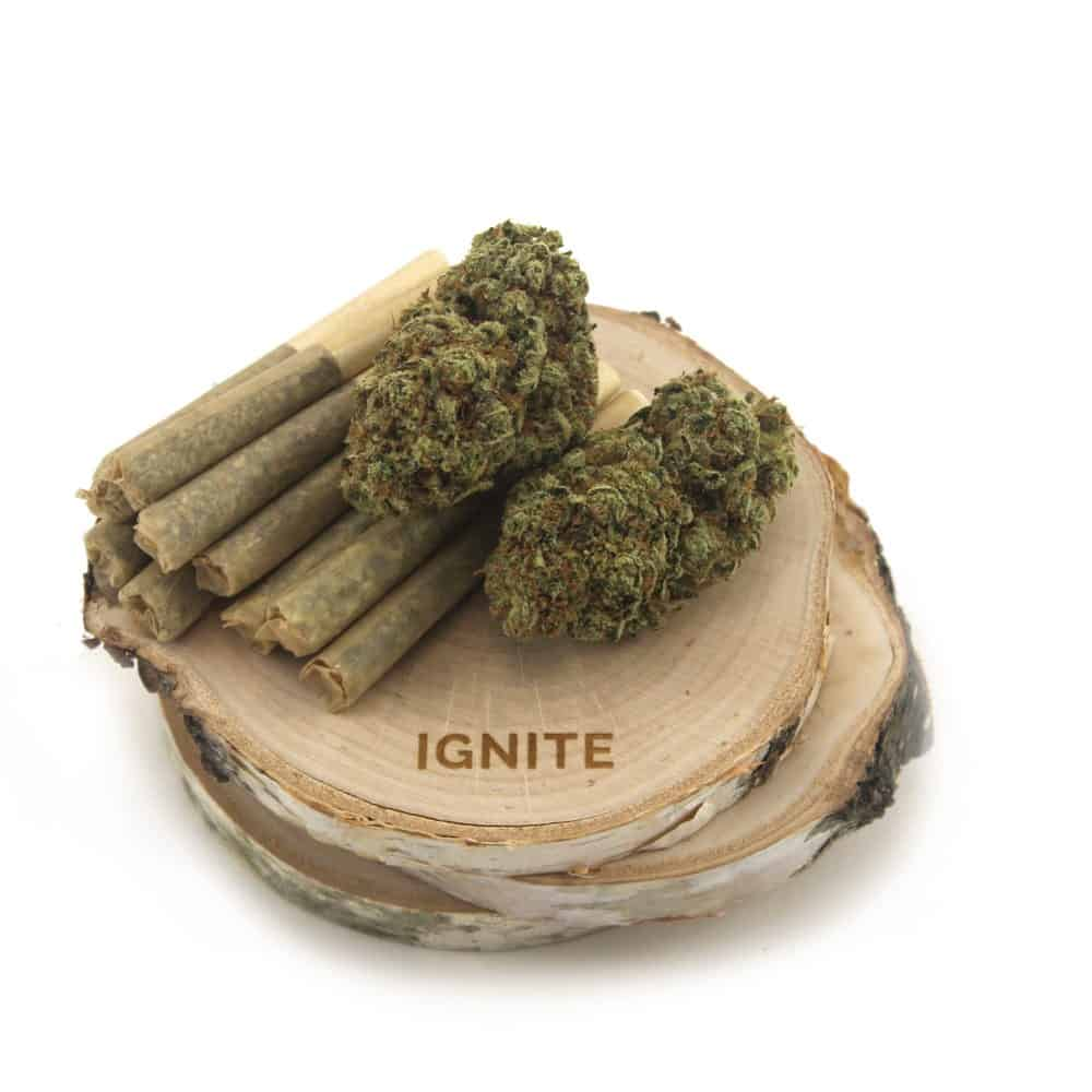 Guaranteed Gram Pre-Rolls Ignite (1g) by Birch + Fog - Image © 2018 Birch + Fog. All Rights Reserved.