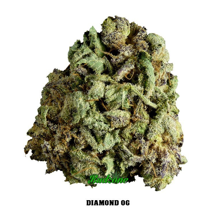 Diamond OG by Bud Zone - Image © 2020 Bud Zone. All Rights Reserved.