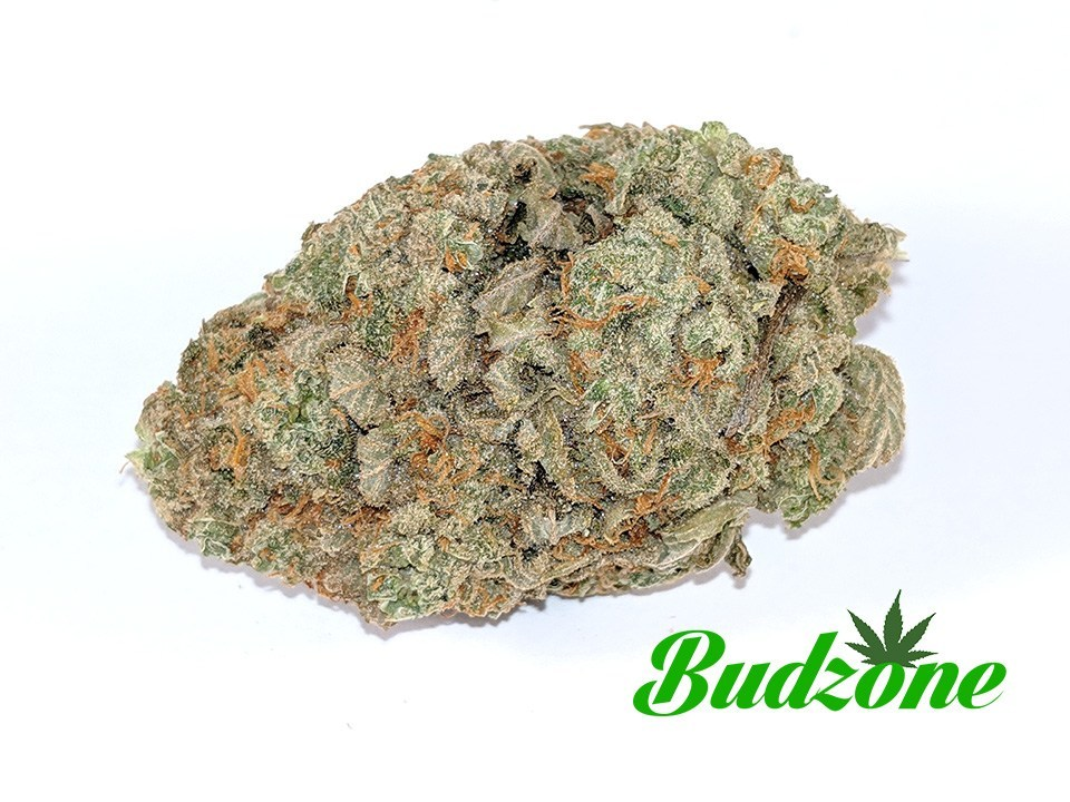 Green Candy by Bud Zone - Image © 2020 Bud Zone. All Rights Reserved.