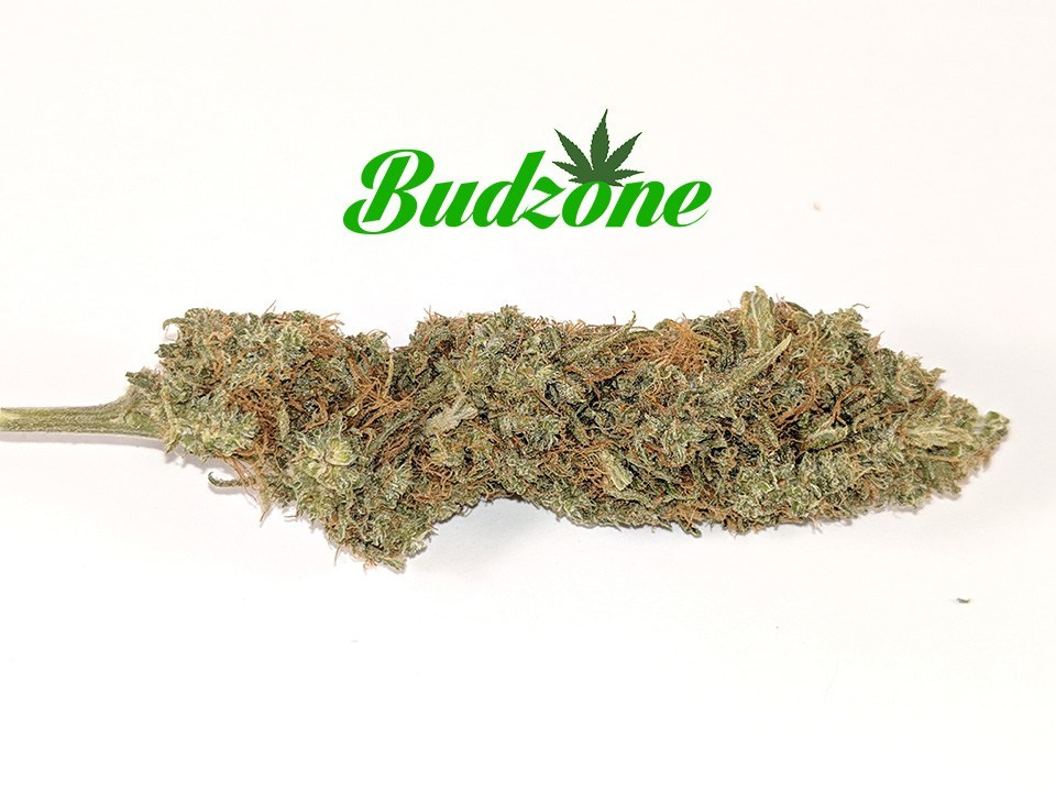 Ultra Sour by Bud Zone - Image © 2020 Bud Zone. All Rights Reserved.