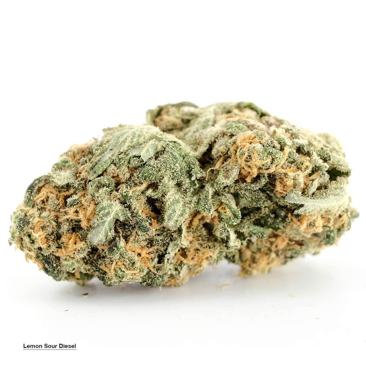 Lemon Sour Diesel (AAAA) by Buy My Weed Online - Image © 2018 Buy My Weed Online. All Rights Reserved.