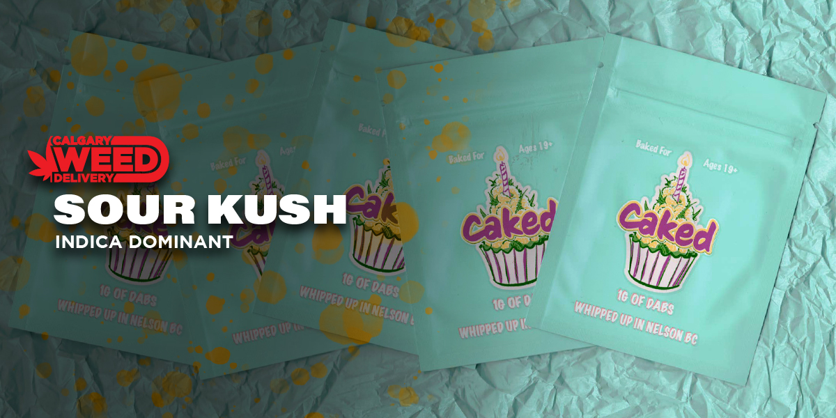 CAKED Shatter Pink Kush by Calgary Weed Delivery - Image © 2021 Calgary Weed Delivery. All Rights Reserved.