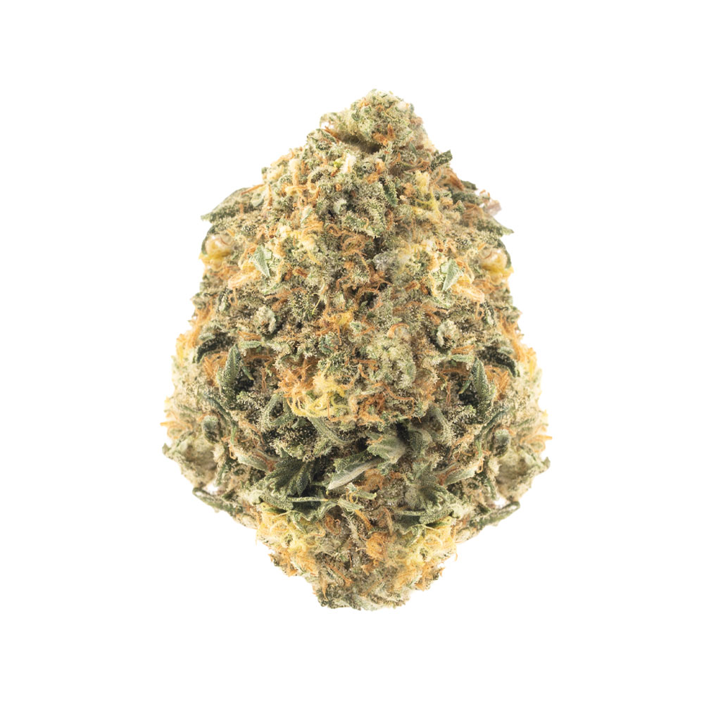 Comatose (28 grams) by Cannabismo - Image © 2020 Cannabismo. All Rights Reserved.