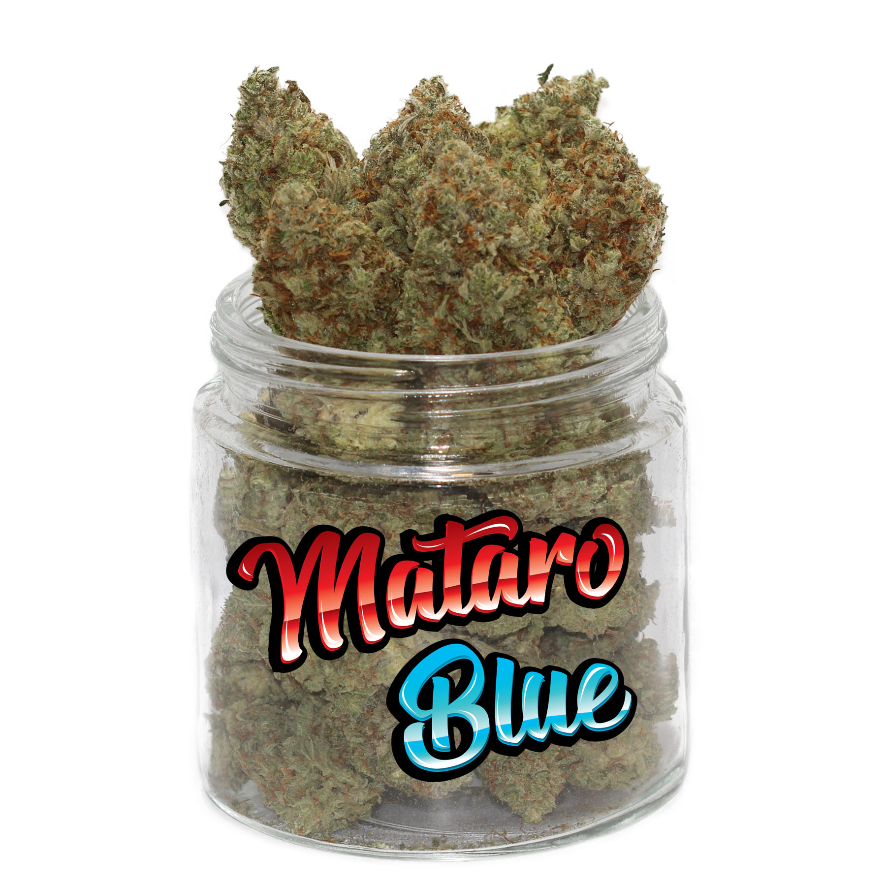 Mataro Blue (AAAA) by Get Kush - Image © 2020 Get Kush. All Rights Reserved.