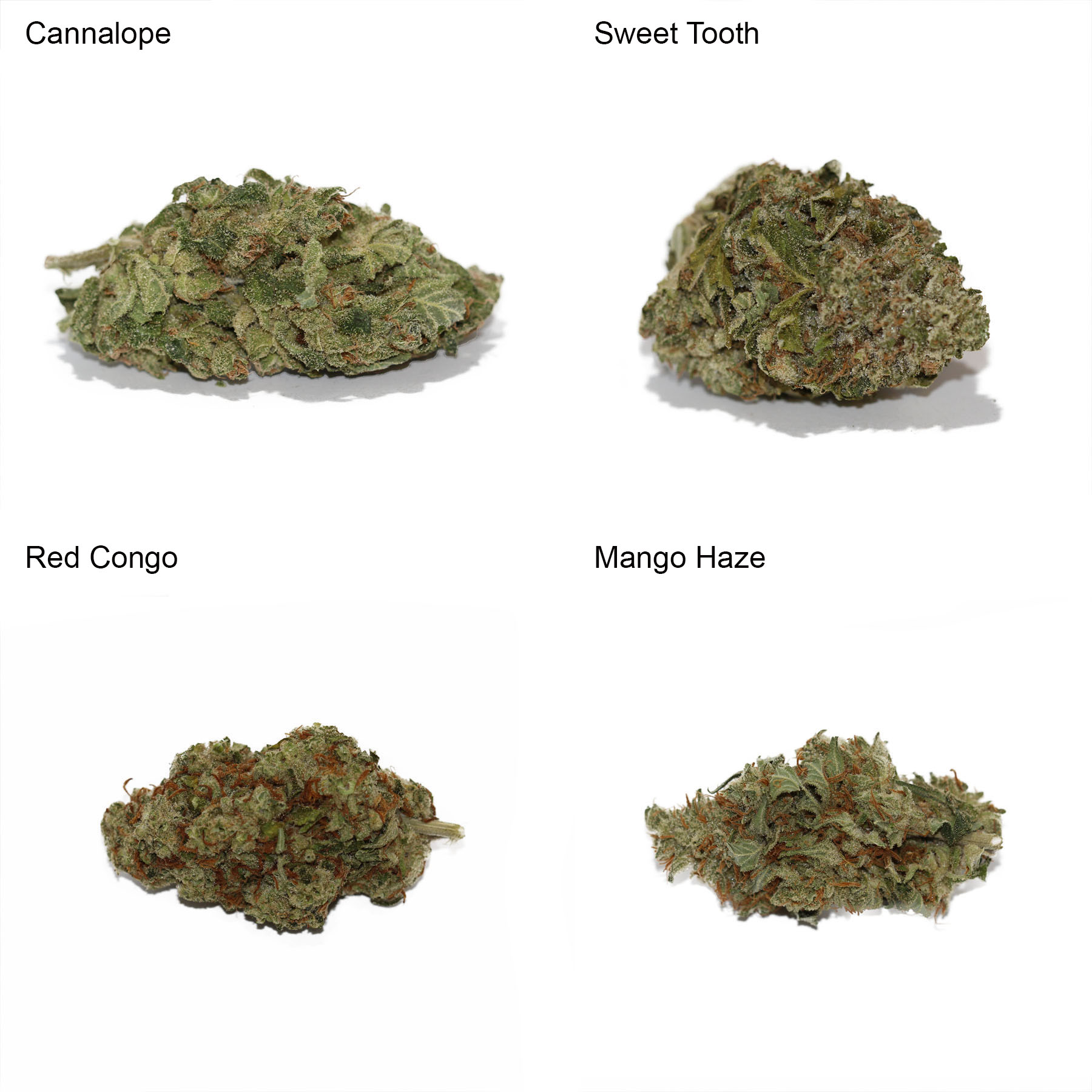 Sativa Variety Pack by Get Kush - Image © 2018 Get Kush. All Rights Reserved.