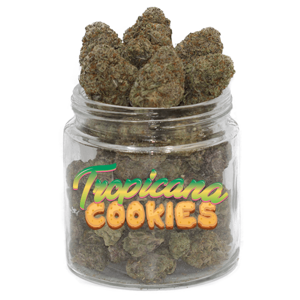 Tropicana Cookies by Get Kush - Image © 2018 Get Kush. All Rights Reserved.