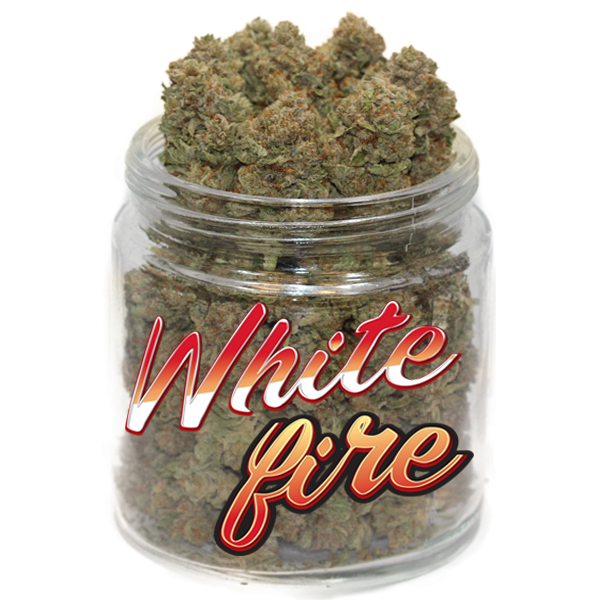 White Fire OG by Get Kush - Image © 2018 Get Kush. All Rights Reserved.