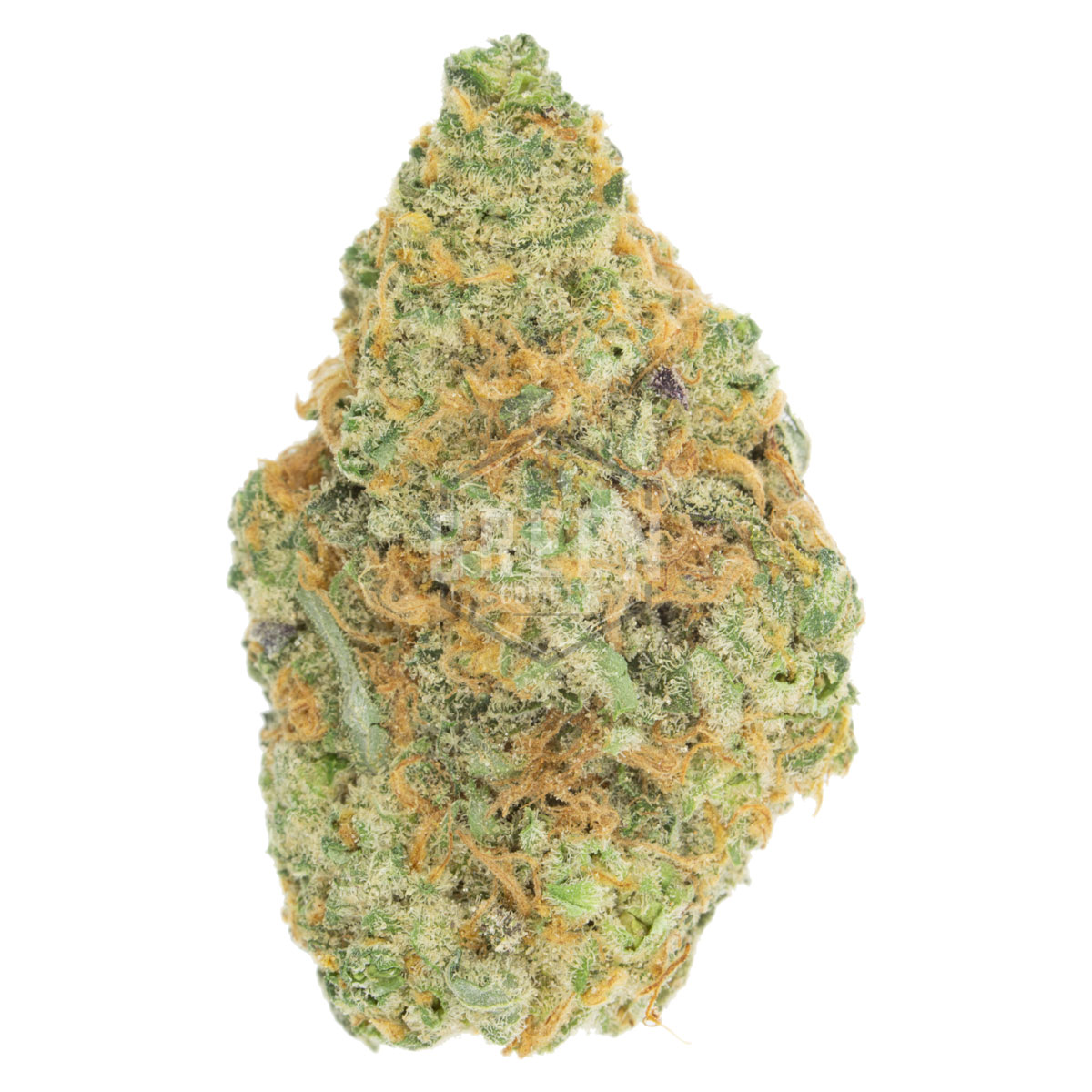 Big Buddha Cheese by Green Society - Image © 2018 Green Society. All Rights Reserved.