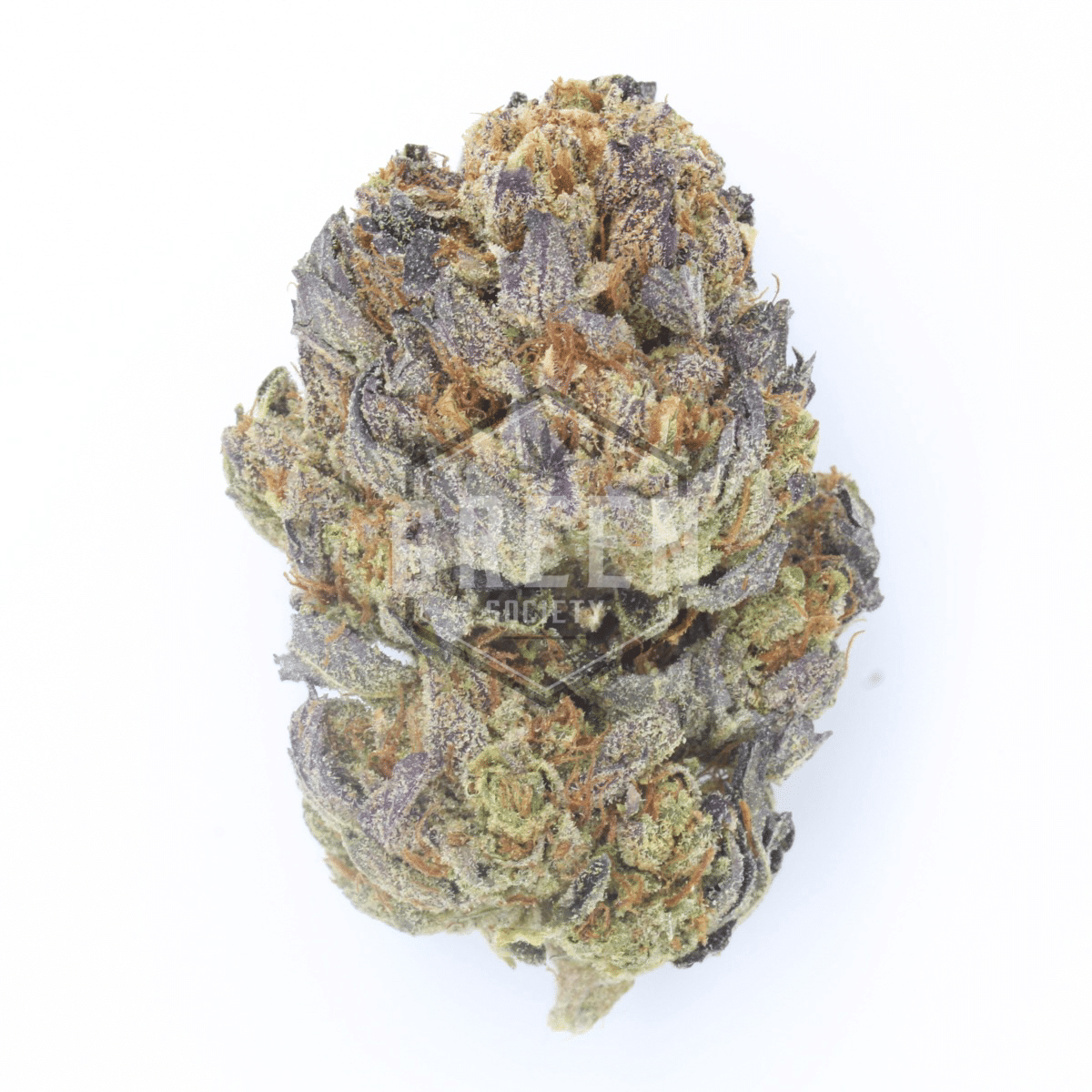 Black Tuna Kush (28 GRAM SPECIAL) by Green Society - Image © 2018 Green Society. All Rights Reserved.