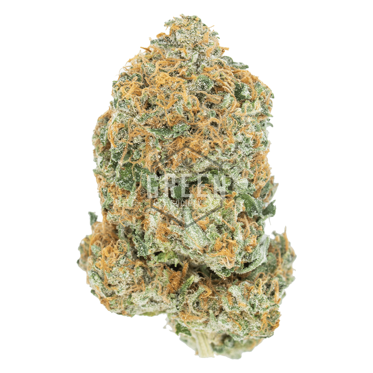 Bubba OG by Green Society - Image © 2018 Green Society. All Rights Reserved.
