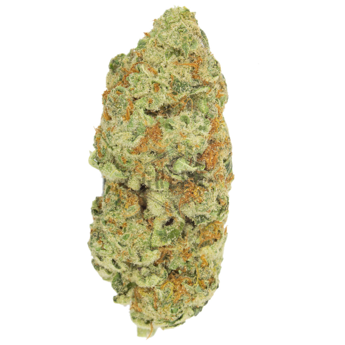 Durban Poison By Loud Labs by Green Society - Image © 2018 Green Society. All Rights Reserved.