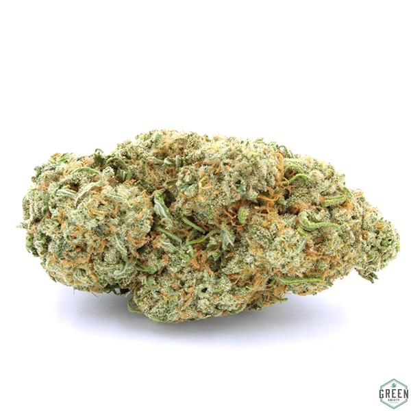 Jack Herer by Green Society - Image © 2018 Green Society. All Rights Reserved.