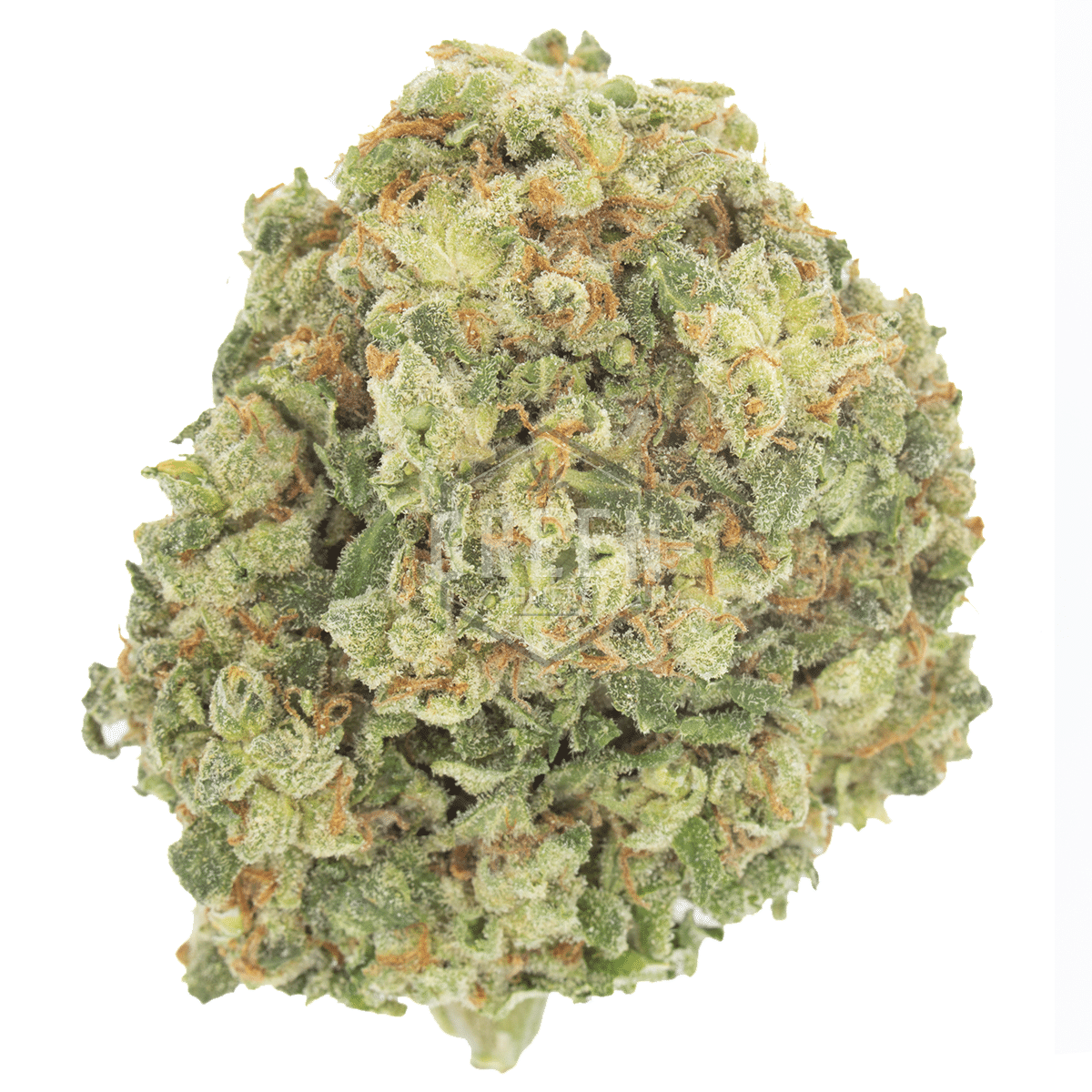 Lemon Diesel by Green Society - Image © 2018 Green Society. All Rights Reserved.