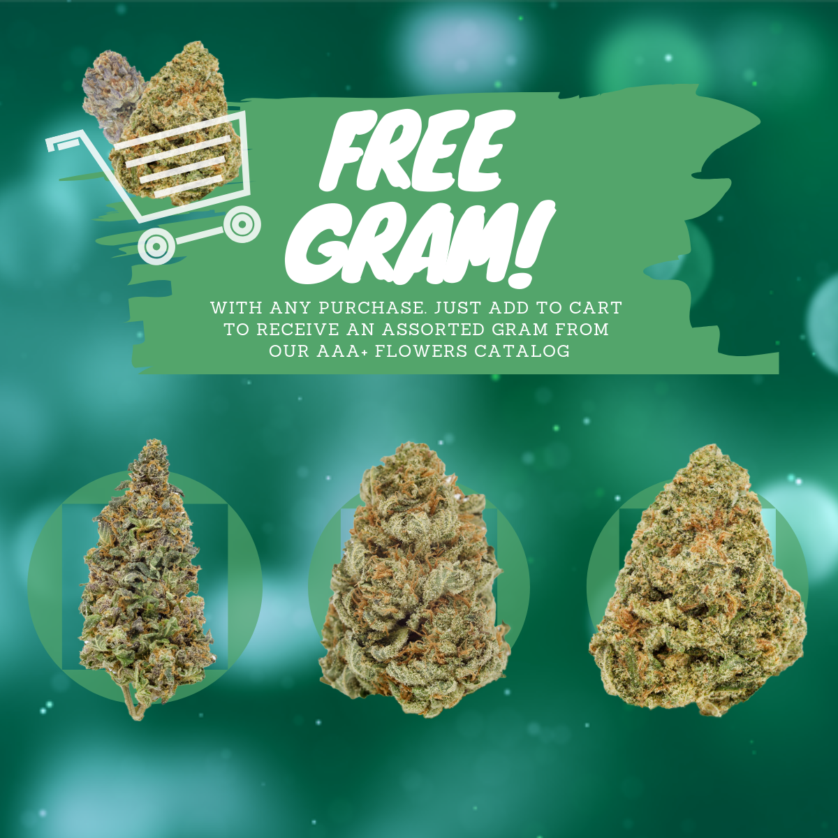 Assorted AAA+ Free Gram by Green Society - Image © 2018 Green Society. All Rights Reserved.