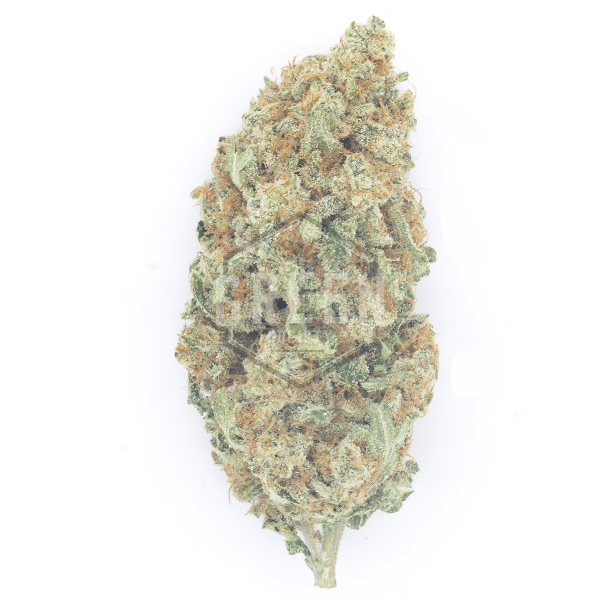 Wedding Cake Ounce Special by Green Society - Image © 2018 Green Society. All Rights Reserved.