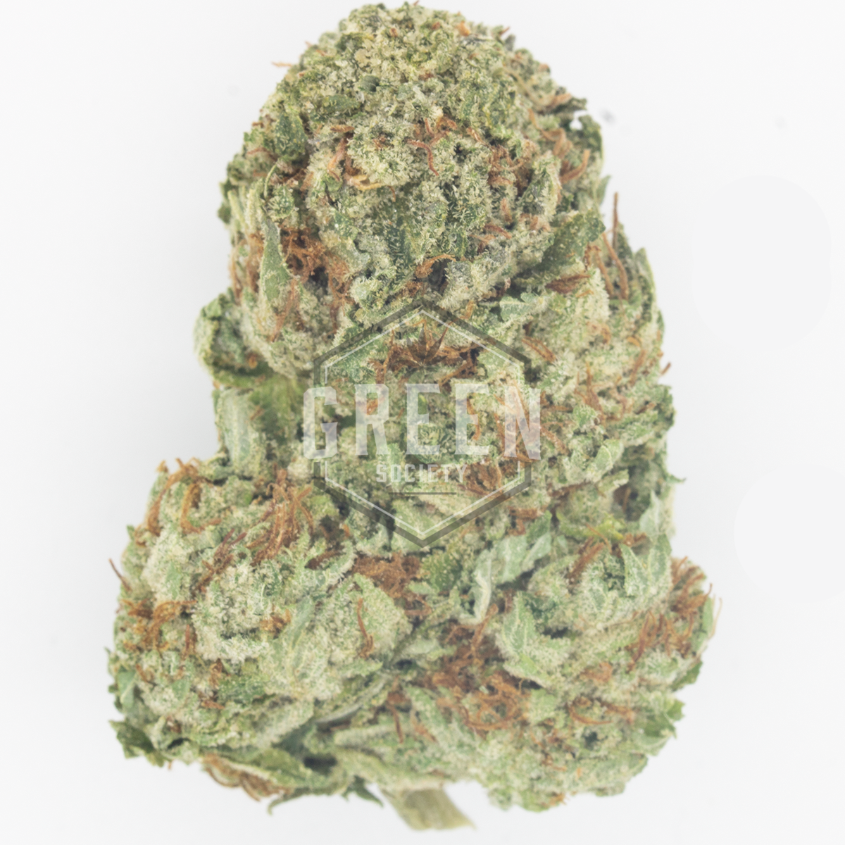 White Fire OG by Green Society - Image © 2018 Green Society. All Rights Reserved.
