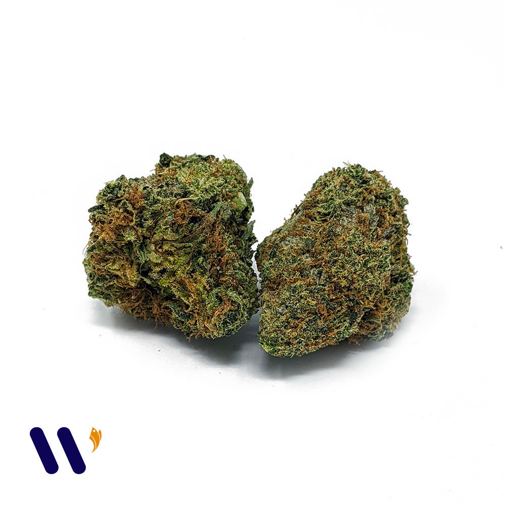Violator Bubba AAA by Weed Cargo - Image © 2020 Weed Cargo. All Rights Reserved.