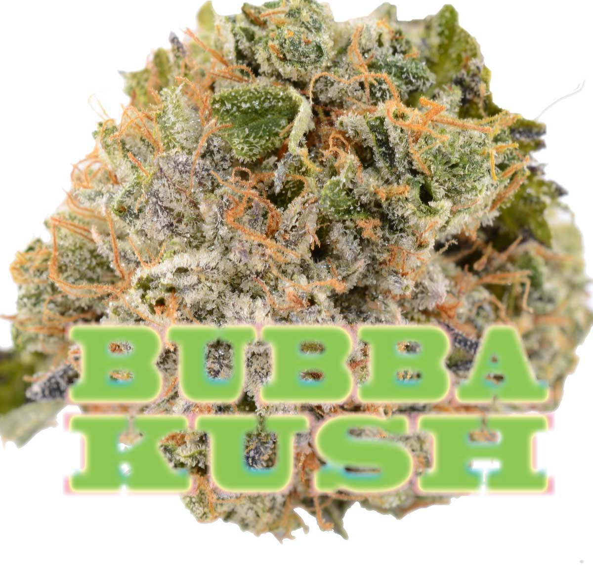 Bubba Kush by BC Bud Store - Image © 2018 BC Bud Store. All Rights Reserved.