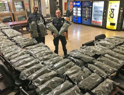 Massive marijuana shipment confiscated by NYPD is legal hemp: business owner